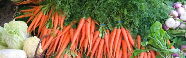 Mercado de orgânicos deve crescer 35% este ano