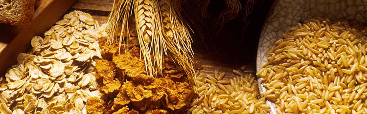 Estimativa da Conab aponta crescimento de 2,6% na safra de grãos