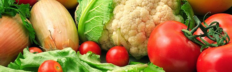 ABRACEN e UNICAMP promovem Curso de Extensão à distância sobre Segurança Alimentar