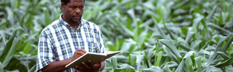 Mais de 40 mil vagas estão disponíveis para cursos de qualificação rural