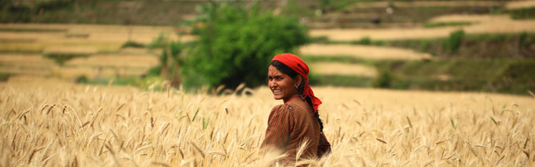 Seminário debate luta das mulheres rurais no país