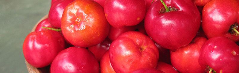 Conheça melhor a acerola, uma das melhores fontes de vitamina C