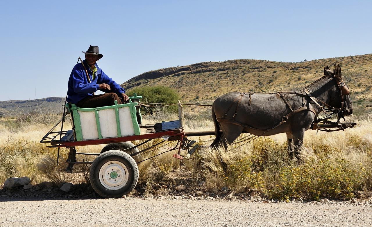 La agricultura familiar es la clave para erradicar el hambre en Latinoamérica, según la FAO