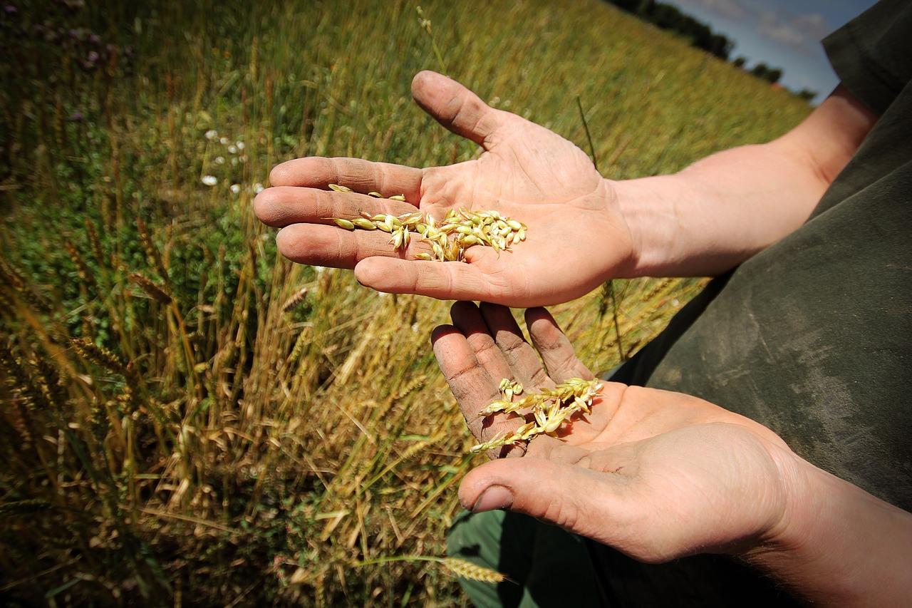 Juventude debate agricultura familiar na América Latina