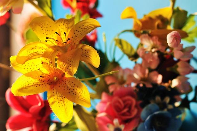 Mercado de Flores da Ceasa abre inscrição para nova turma do curso de Formação de Floristas