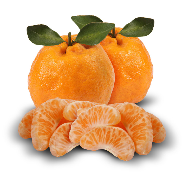 Mandioca e tangerina ponkam estão mais em conta esta semana (14/7)