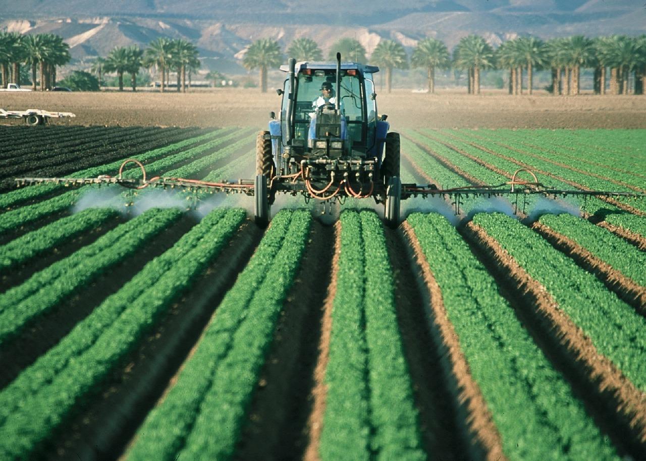 A importância de se reduzir o uso de agrotóxicos para a produção de alimentos saudáveis