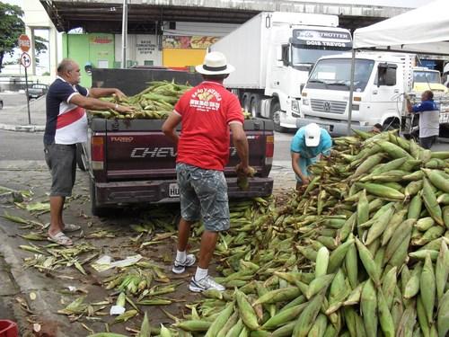 Produtores rurais da Paraíba ganham incentivos para comercializar o milho verde