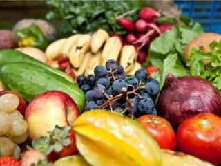 Ceasa/SC e Mesa Brasil arrecadam 543 toneladas de alimentos