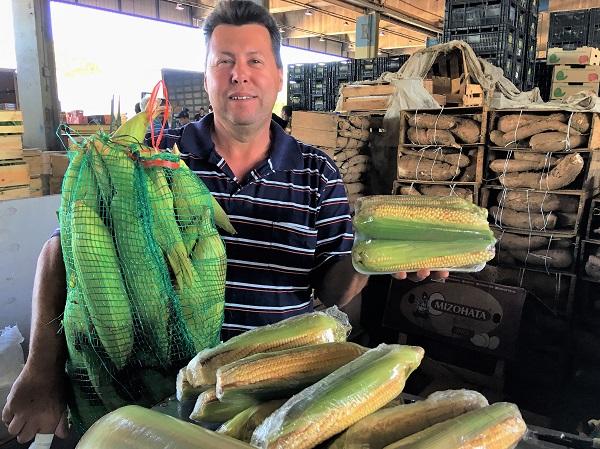 Milho verde mantém queda de preço na CeasaMinas