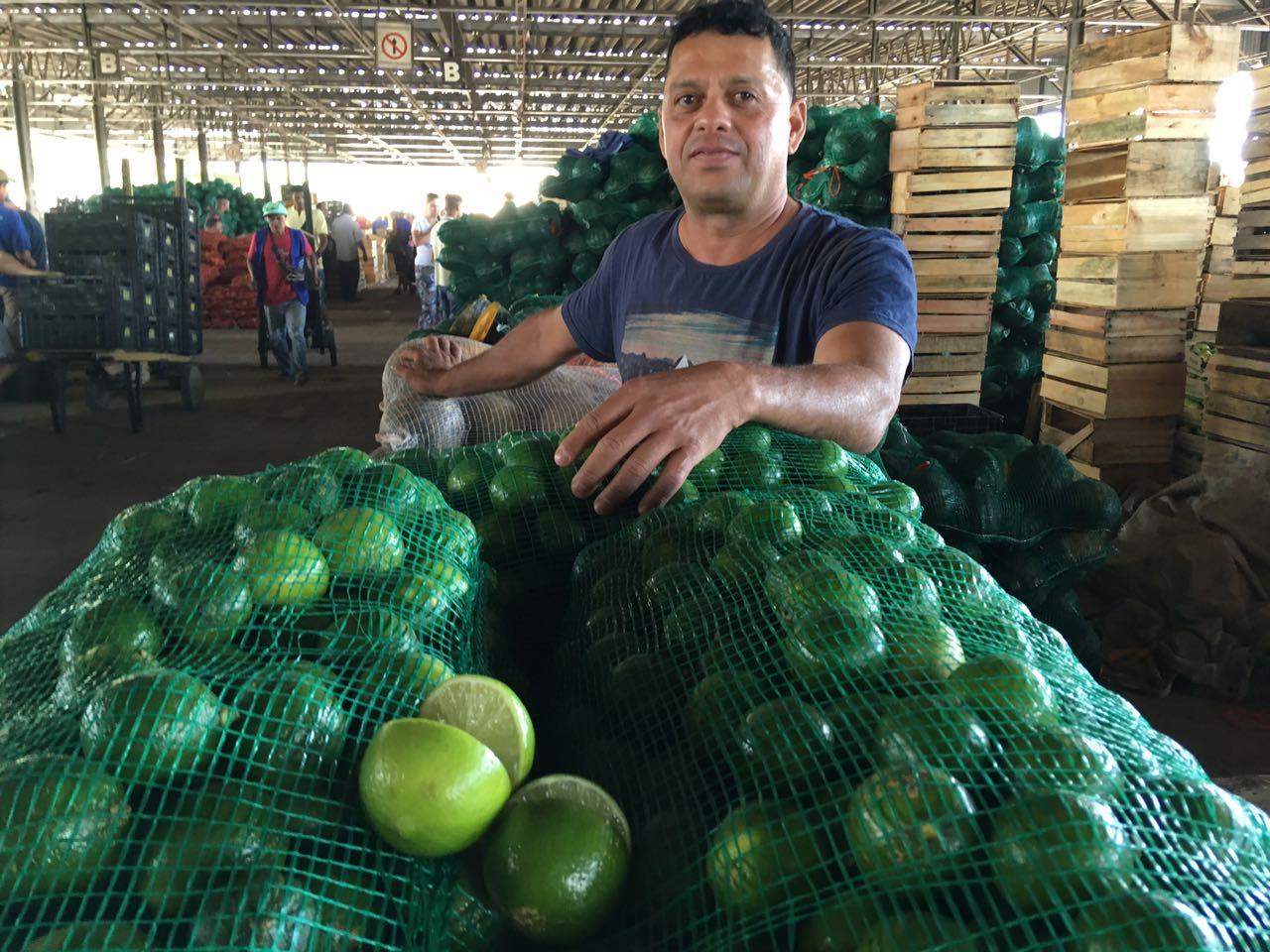Preço do limão tahiti em safra recua até 71% na CeasaMinas