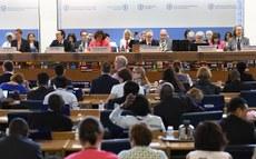 Brasileiro é reeleito por aclamação presidente do Codex Alimentarius